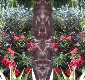 20200809 PiccolaItalia Spiegelbild ChrisTina Maywald